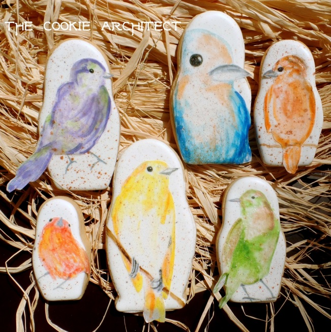 Birds Grouped | The Cookie Architect