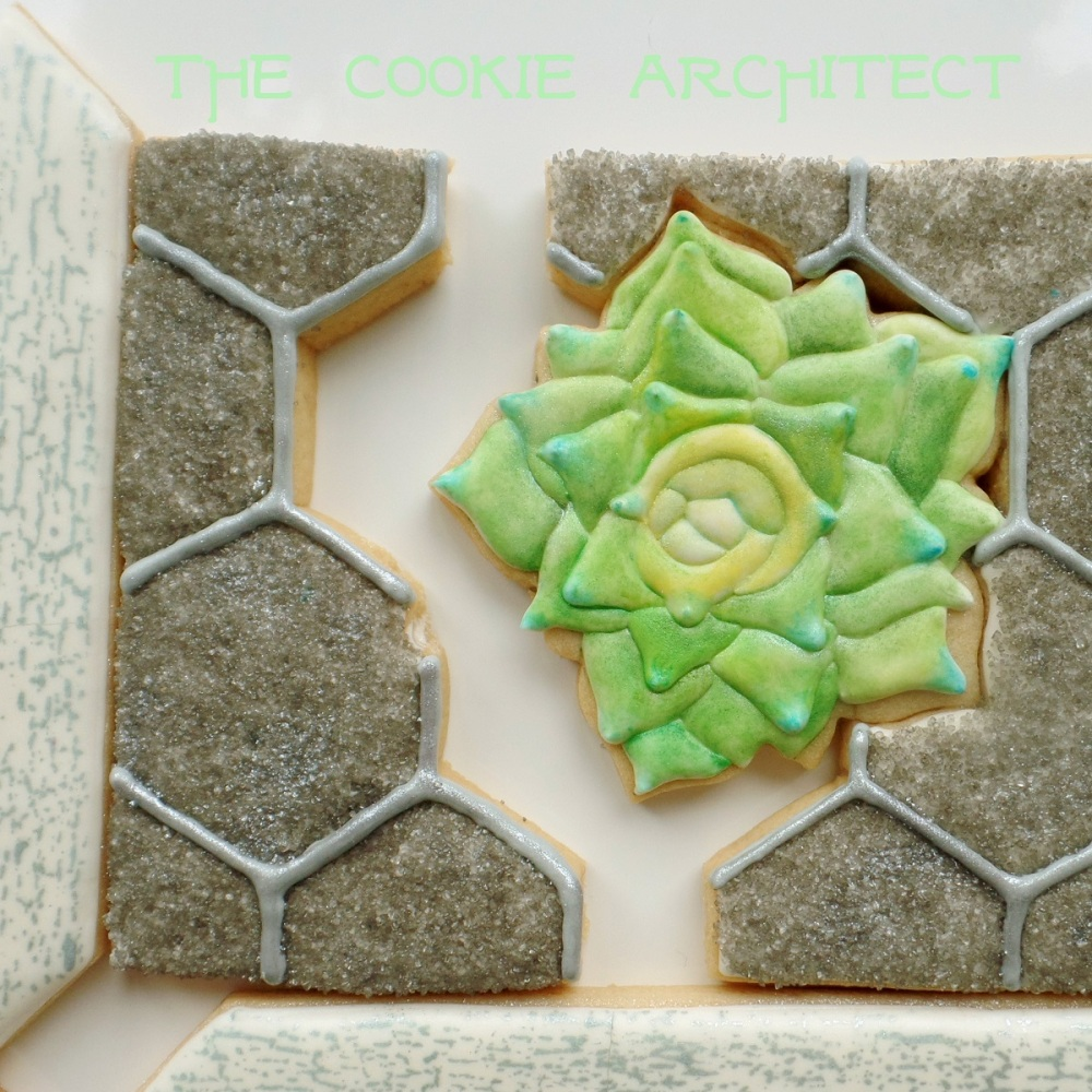 Cookie Succulent | The Cookie Architect