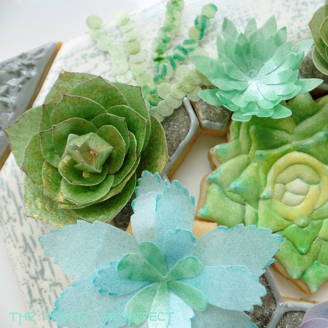 Succulent Detail two | The Cookie Architect
