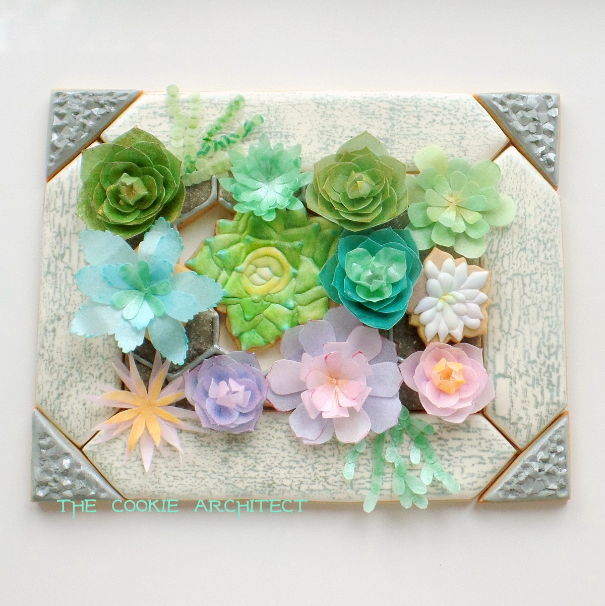 Succulents Framed | The Cookie Architect