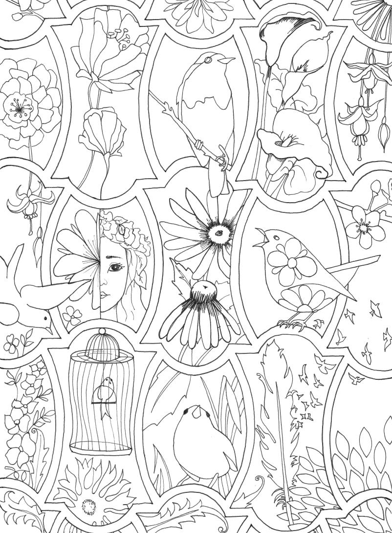 Coloring Page Birds |The Cookie Architect
