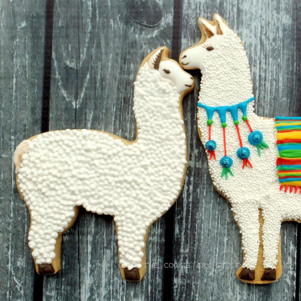 Llama and Alpaca | The Cookie Architect