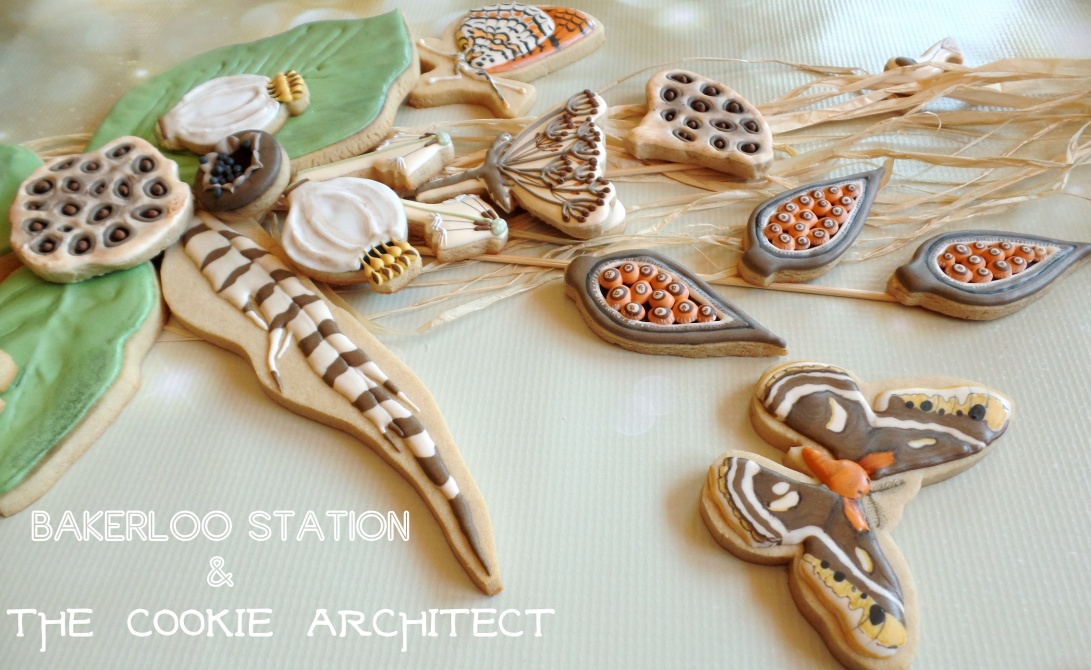 Cycle of Life Collaboration Angle | The Cookie Architect