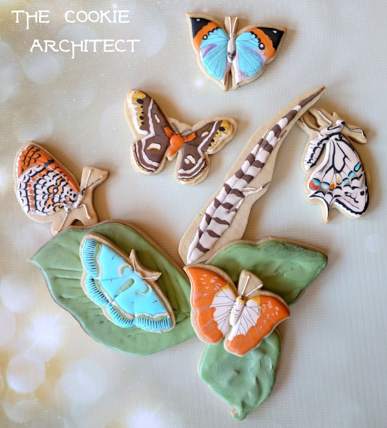 Butterflies and Moths | The Cookie Architect