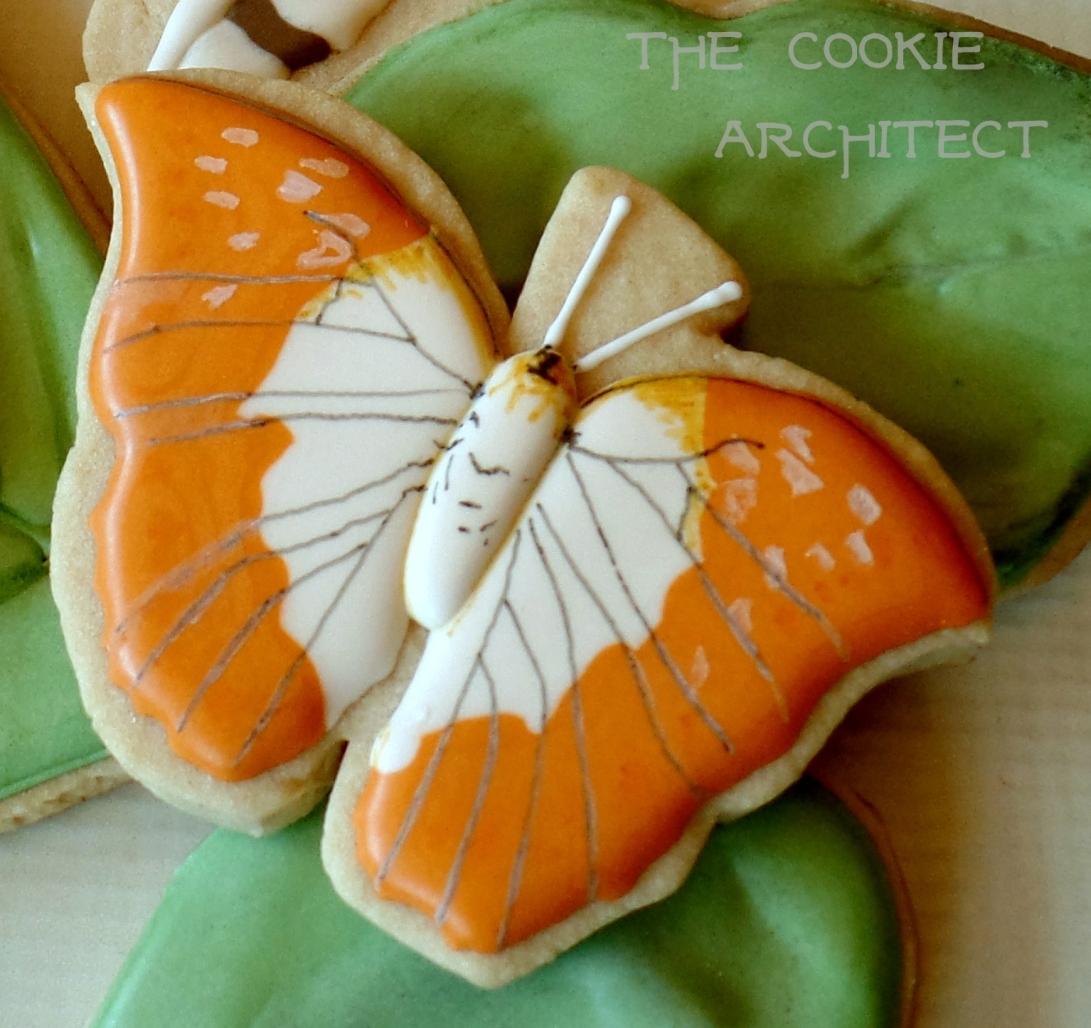 Orange Moths | The Cookie Architect