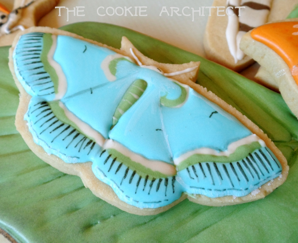 Blue Moths | The Cookie Architect