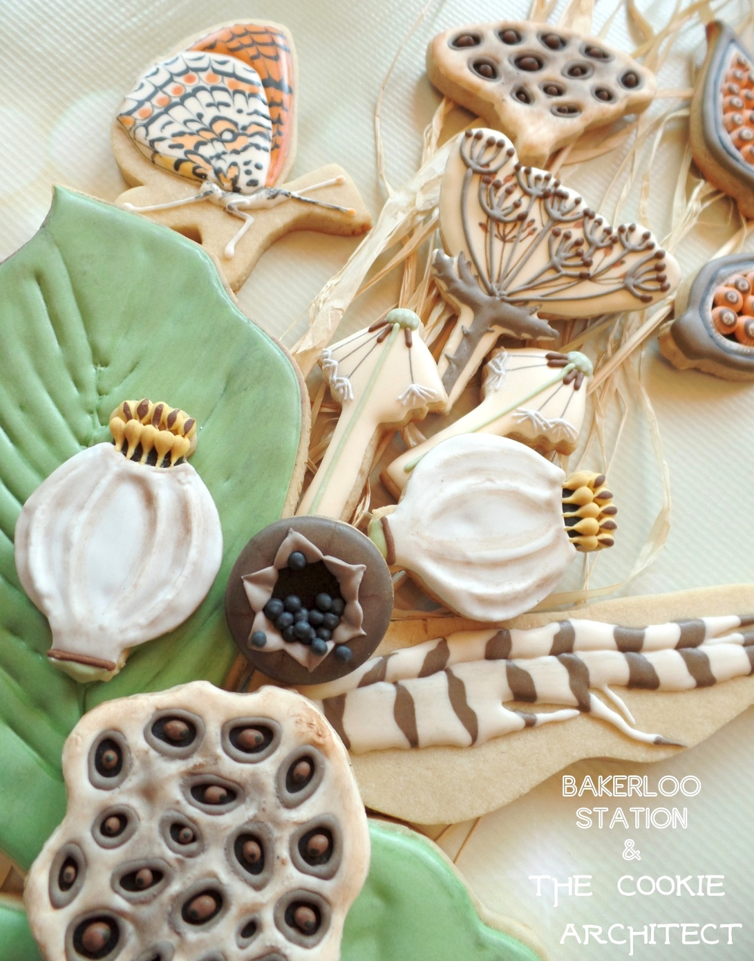 Seed Pods by Bakerloo Station | The Cookie Architect